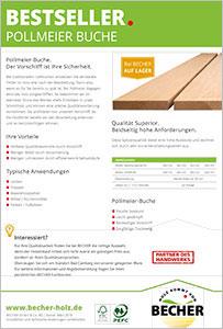Pollmeier Buche - Becher Bad Camberg