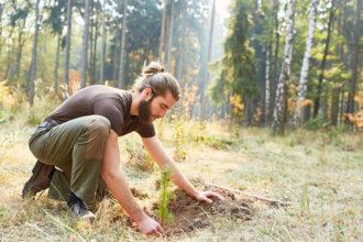 Ein Mann, der einen Baum pflanzt
